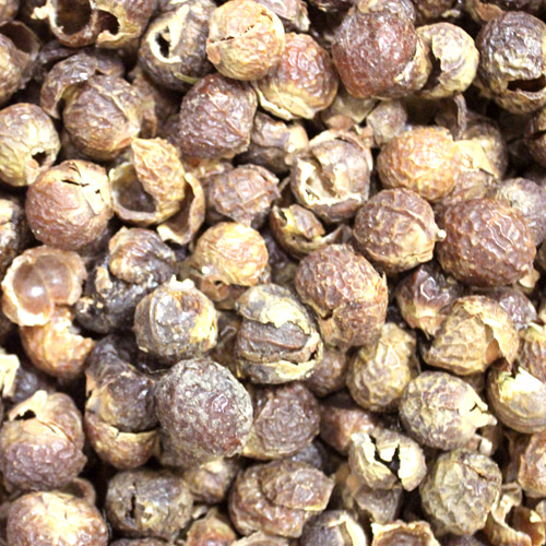 트리리프솝베리열매 1kg (Sapindus Trifoliatus (Soap berry) Fruit) 인도