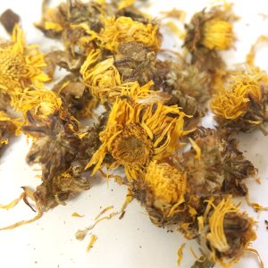 감국 50g (Chrysanthemum Indicum Flower) 중국